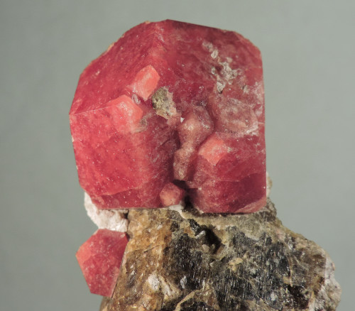 Grossular on Vesuvianite (ex S. Koster Coll.)