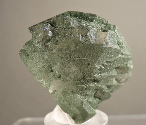 """Quartz """"Gwindle"""" with Chlorite  (ex S. Koster Coll.)"""