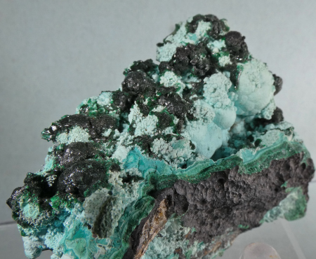 Malachite with Chrysocolla (Ex S. Koster Coll.)