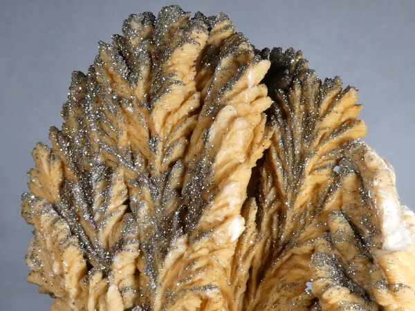 Barite with Pyrite