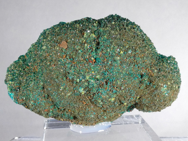 """Dioptase """"Cast"""" with Mimetite"""